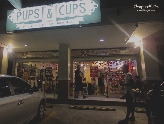 pups-and-cups-4