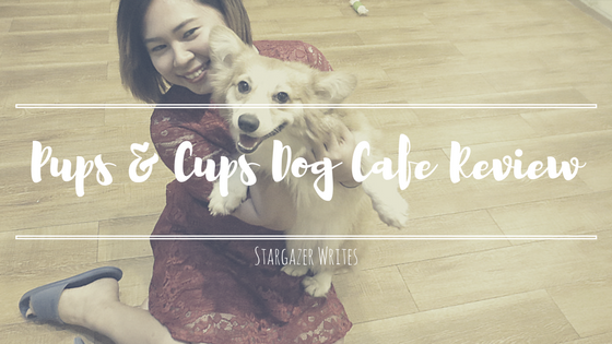 pups-and-cups