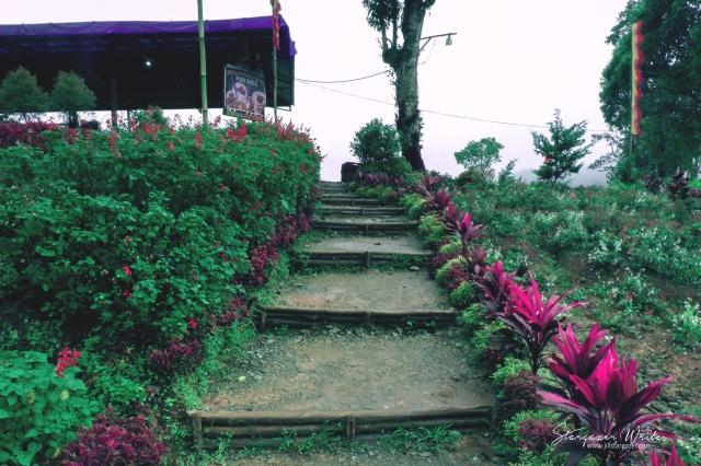 bemwa stairs 2